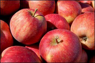 『奇跡のリンゴ』に学ぶ不可能を可能にしてしまう人の特徴