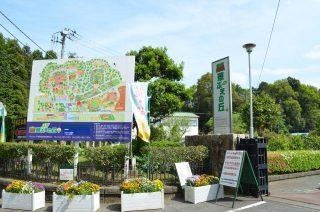 千葉県佐倉市「草ぶえの丘」は子供から大人まで楽しめる体験型施設でした‼︎